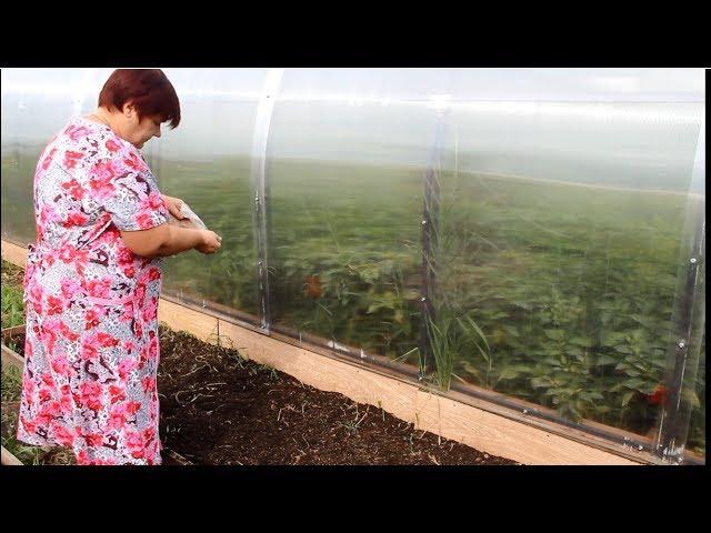Юлия Минаева Как Улучшить Структуру Почвы Огород Без Хлопот