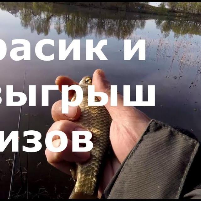 Рыбалка. Розыгрыш призов. Карасики Простая рыбалка