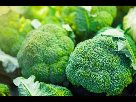 Урожайный огород В два раза больше капусты секрет выращивания Капуста брокколи