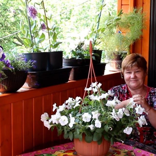 Юлия Минаева Моя Терраса. Обзор Цветов. Как Я Отдыхаю И Радуюсь Жизни.