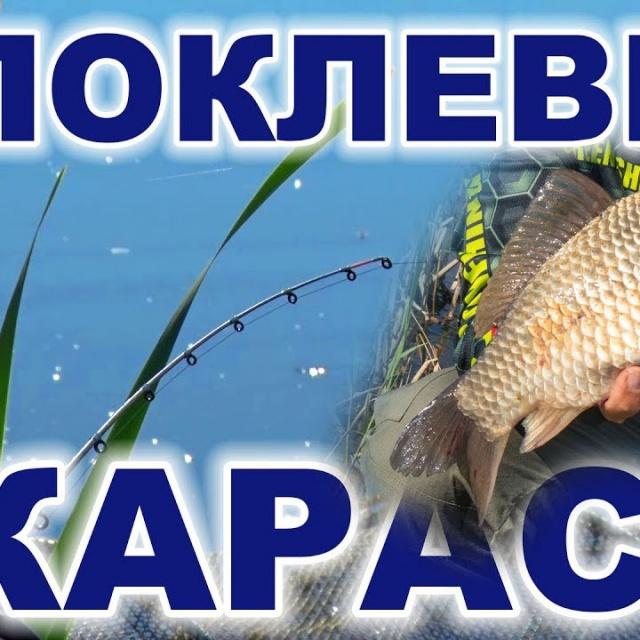 Поклевки карася на фидер (карась мотает нервы рыболову :)) [salapinru]