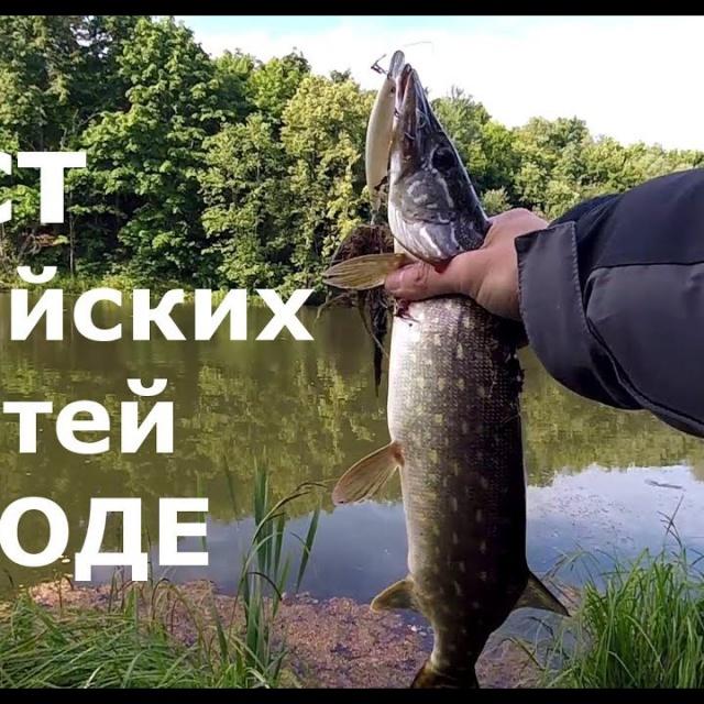 Рыбалка.Тест трэвел спиннинга с Ali, катушка, плетёнки и воблеры с Китая Простая рыбалка