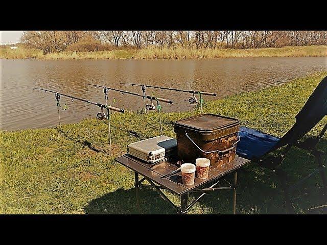 Рыбалка в АКВАРИУМЕ на кормачки,ВЕДРО рыбы за три часа.