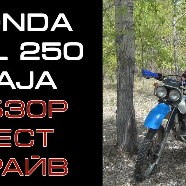 ОБЗОР Honda XRL 250 Baja. Старый друг лучше новых двух.