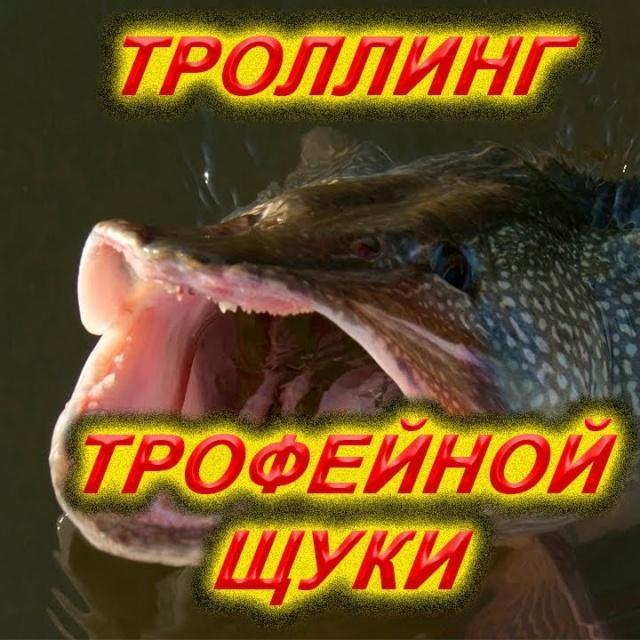 Троллинг, рыбалка, ловля щуки, трофейная щука