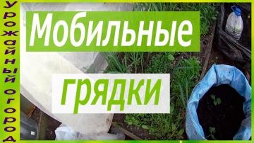 Выращивание огурцов и кабачков в мешках мобильных грядках