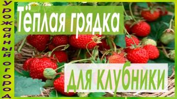 Урожайный огород ТЕПЛЫЕ КЛУБНИЧНЫЕ ГРЯДКИ!