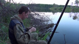 Ловлю карася или секрет ловли крупного карася Видео