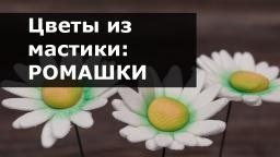 Цветы из мастики - Ромашка. Пошаговый мастер-класс лепки ромашки из мастики