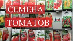Юлия Минаева -  Семена Томатов. Подготовка к проекту. (02.12.16)