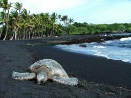Пляж из черного песка на Гавайях: Удивительная красота