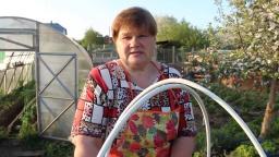 Юлия Минаева - Посадка огурцов в бочку Тонкости ухода