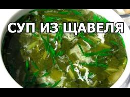 Суп из щавеля. Необычный суп со щавелем с мясом! Видео рецепт