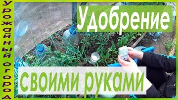 Урожайный огород СУПЕР УДОБРЕНИЕ ИЗ ДРОЖЖЕЙ СВОИМИ РУКАМИ!!!