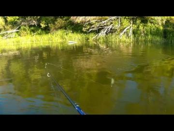Рыбалка сплавом в жару на реке. Ловля хищника на спиннинг