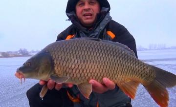 Рыбалка зимой Ловля огромных карпов со льда