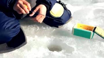 Зимняя ловля окуня - Техника ловли на мормышку.
