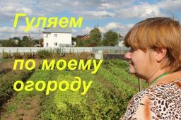 Юлия Минаева -  Прогулка по огороду. Продолжение.