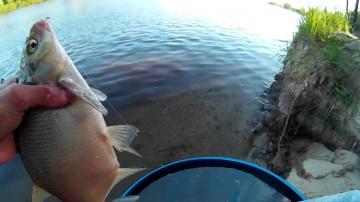 Ловля Леща на Фидер в Июне | Рыбалка на Донную Снасть 2017 (Лещ Видео)