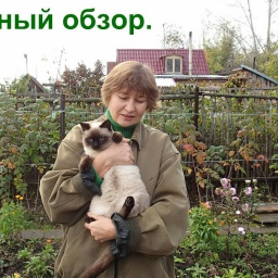 Ольга Уголок - Дачный обзор Дачные дела в октябре