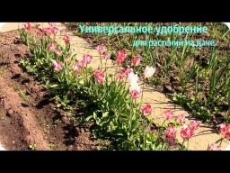 Ольга Уголок -  Универсальное удобрение для всех растений на даче.