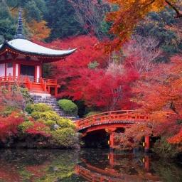 Самые удивительные пейзажи Японии