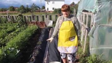 Юлия Миняева Посадка клубники в нетканый укрывной материал.