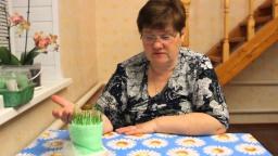 Юлия Минаева -  Как собрать богатый урожай лука.