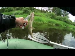 Рыбалка на реке Западная Двина - Часть № 1
