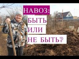Юлия Минаева\НАВОЗ: Быть или Не Быть