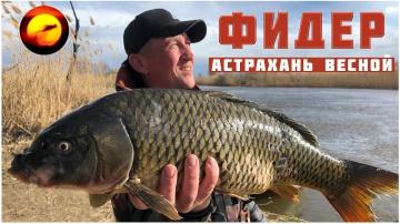 Рыбалка в Астрахани / Вобла 2018 / Ловля на фидер / Нижняя Волга весной