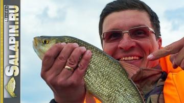 Ловля плотвы с лодки на озере Плещеево поплавочная рыбалка salapin ru