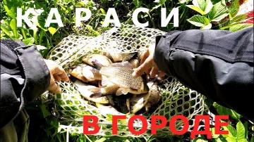 Ловля карася на манку с чесноком Рыбалка в городе Простая рыбалка