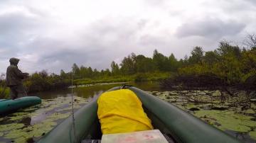 Рыбалка на лесной речке | Щука ,ловля в дождь | Ловля щуки на Джиг
