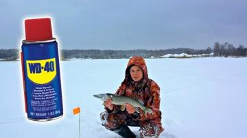 Ловля щуки на WD-40, Рыбалка на щуку с жерлицами (Зимняя рыбалка на живца) / Fishing with WD-40