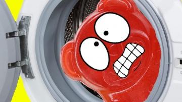 Валера Желейный медведь против стиральной машины