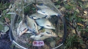 Рыбалка на Фидер в Сентябре Ловля  Лещ Осень 2018