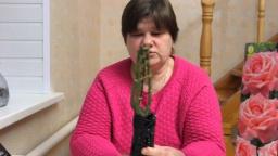 Юлия Минаева - Как правильно выбрать розу?