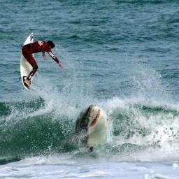 Самый опасный пляж в мире: Нью Смирна Бич Флорида: Здесь акулы нападают на людей