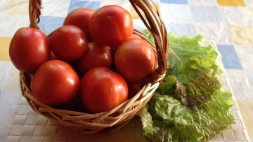 Огород где все растет 252. Очень понравились эти сорта помидоров