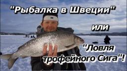 """ПашАсУралмашА:-""""Рыбалка в Швеции"""" или """"Ловля трофейного СИГА""""!"""