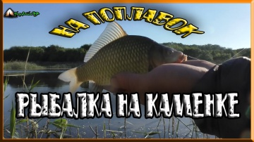 рыбалка на поплавок на реке Каменка/рыбалка в июне/рыбалка 2018/ловля карася/