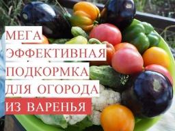 Юлия Минаева\Мега Эффективная Подкормка для Огорода из ВАРЕНЬЯ Байкал из Варенья