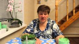 Юлия Минаева -  Особенности посадки капусты и лука-порея.