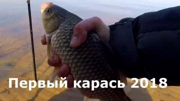 Первый карась 2018 года, Фидер, Рыбалка Простая рыбалка