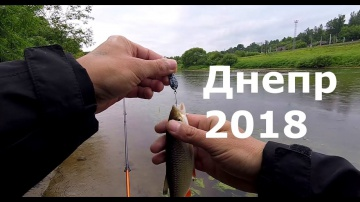 Рыбалка. Днепр после нерестового запрета 2018 Простая рыбалка