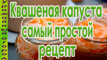 Урожайный огород ВКУСНЫЙ И ПРОСТОЙ РЕЦЕПТ КВАШЕНОЙ КАПУСТЫ