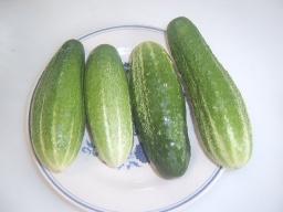 Огуречный салат | Рецепт Маринкины Творинки