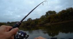 Рыбалка в городе Смоленск - Днепр
