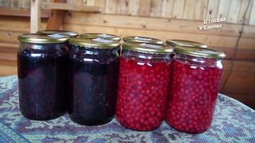 В Гостях у Елены Витамины на зиму красная и черная смородина в собственном соку